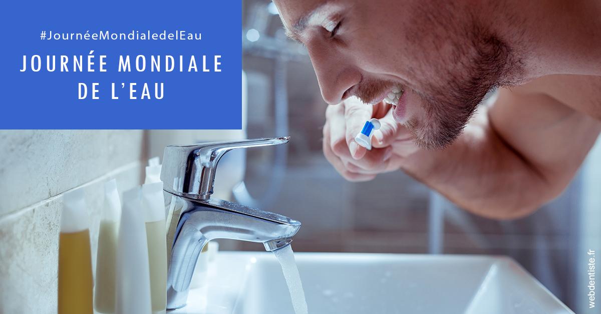 https://dr-jan-patrick.chirurgiens-dentistes.fr/Journée de l'eau 2